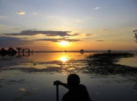 """Amazônia: Por que querem frear a """"Onda do Bem""""?"""